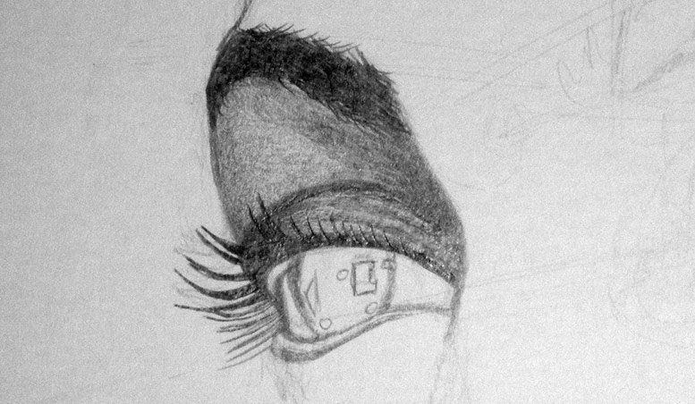 Shading detail with the drawing of the eye